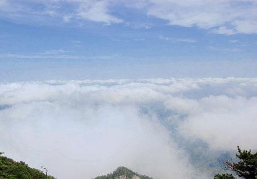 绿色云雾 乡村风景