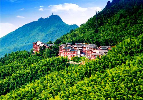 茶山竹海,位于重庆永川城北2公里处,年平均气温14摄氏度,景区森林