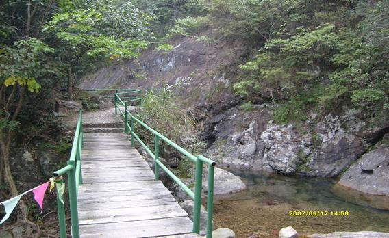 野鹤湫旅游风景区