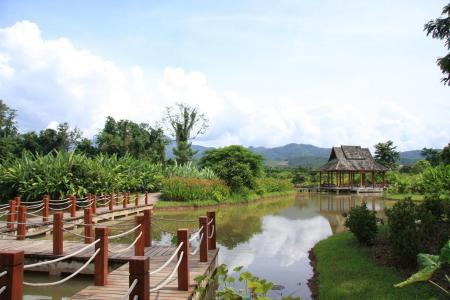西双版纳热带植物园